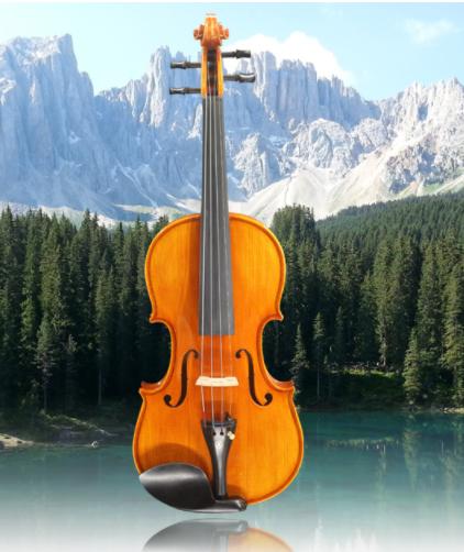 小提琴初学者儿童成人专业级考级小提琴